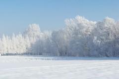 Zima w Załężu 2010 (fot. Michał Bal)